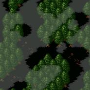 Forestofdespair1
