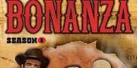 Season 1 of Bonanza