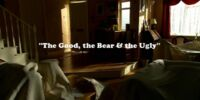 The Good, the Bear & the Ugly