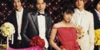 Hana Yori Dango Final (novel)
