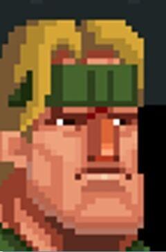 Bronnar