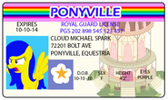 Cloud Spark License Ponyville