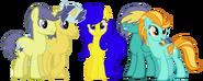 Cloud Spark's Family