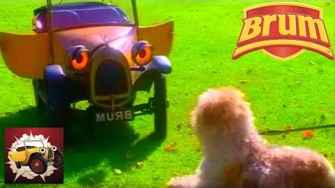 Brum and the Diamond Dog