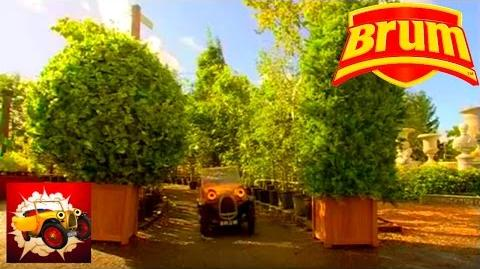 Brum 313 - BUSHES - Full Episode