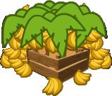 Banana Plantation Icon