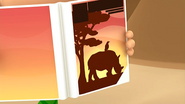 Rhino37