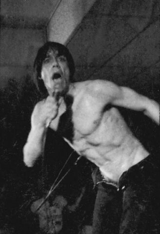File:Iggy pop davis b&w 1.jpg