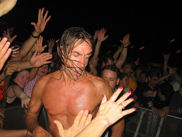 File:Iggy Pop Memphis 2007.jpg