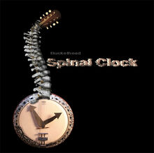 Spinal-clock-cover
