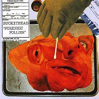 Buckethead-ForensicFollies