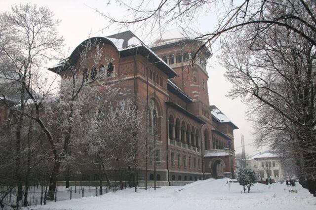 Fișier:Muzeul Taranului Roman1.jpg