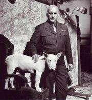 George scott patton willie