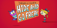 Hide and Go Freak