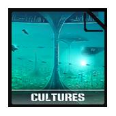 Wiki-non-grid Cultures