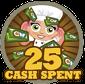 25cashSpent