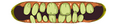 Thumbnail for version as of 06:46, November 14, 2011