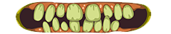 File:Iw5 cardtitle smile.png
