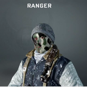 Ranger Face Paint BO