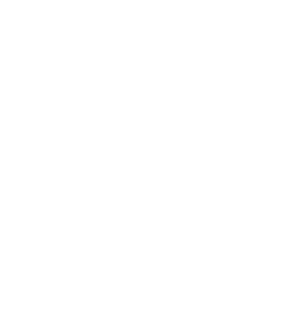 Group 935 logo WaW