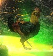 ChickenDOA