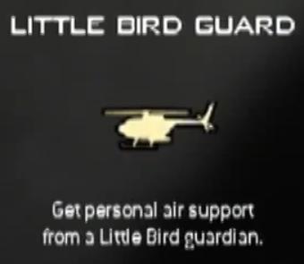 File:Little Bird Guard MW3 CreateAClass.png