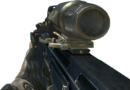 FAD Hybrid Sight MW3
