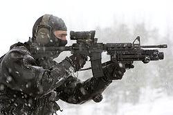 File:C8 Carbine.jpg