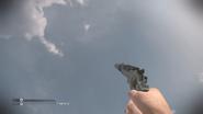 .44 Magnum Silencer CoDG