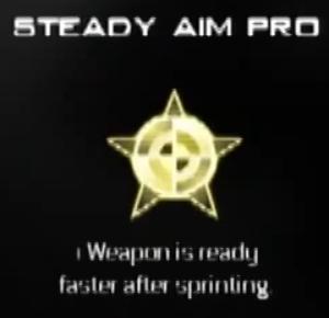 File:Steady Aim Pro MW3 CreateAClass.png