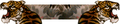 Iw5 cardtitle tattoo 02.png
