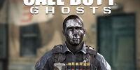 Hesh Multiplayer Skin