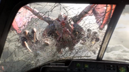Gargoyle bursting through window 2 Exodus CoDG