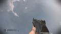 AK-12 Shotgun CoDG.png