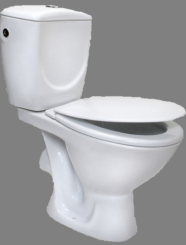File:Personal Toilet Bowl Soldier sig.png