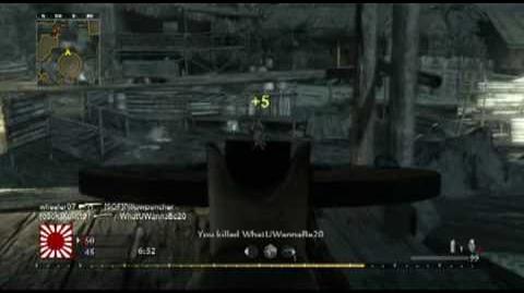 Call of Duty World at War DP-28