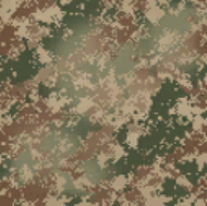 Digital Classic Camouflage AW