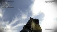 AK-12 Net CoDG