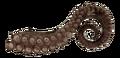 Margwa tentacle BO3.png