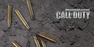 Multiplayer menu screen CoD1