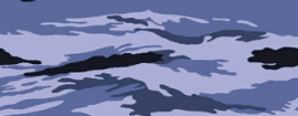 File:Blue Tiger Camouflage menu icon BOII.png