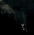 Thumbnail for version as of 18:48, May 10, 2010