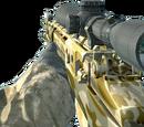 M21/Camouflage