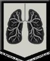 Breath Proficiency MW3