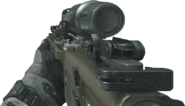 CM901 Hybrid Sight On MW3