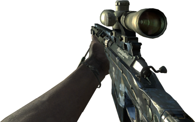 File:Personal Delije Sever 1989 MSR Ghosts Camouflage MW3.png