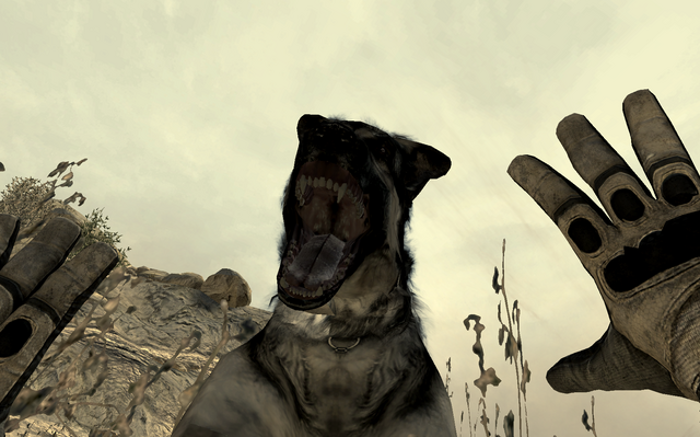 File:Dog attacking a player MW2.png