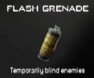 File:Flash Grenade MW3 CreateAClass.png