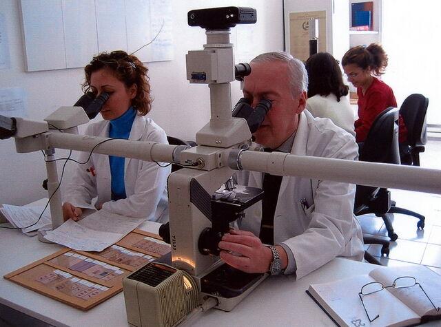 File:Mikroskopta 17.02.2004 01.jpg