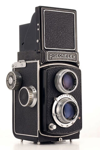 File:Pigeonflex.jpg
